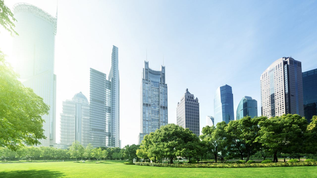 Office buildings and skyscrapers overlooking a park