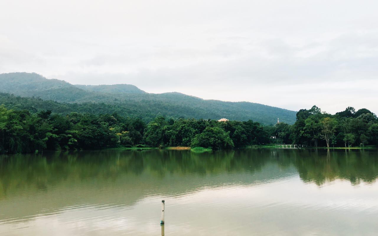 rainforest, jungle, canal, panama, 090218, mb
