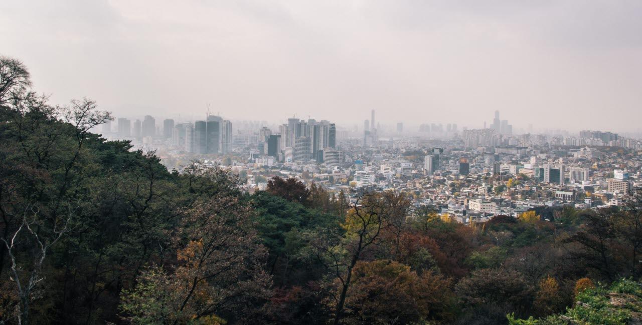 buildings-city-city-view-pexels