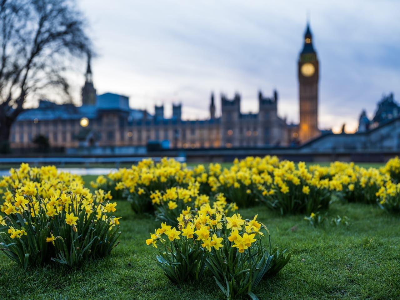 London-Westminster-parliament-unsplash