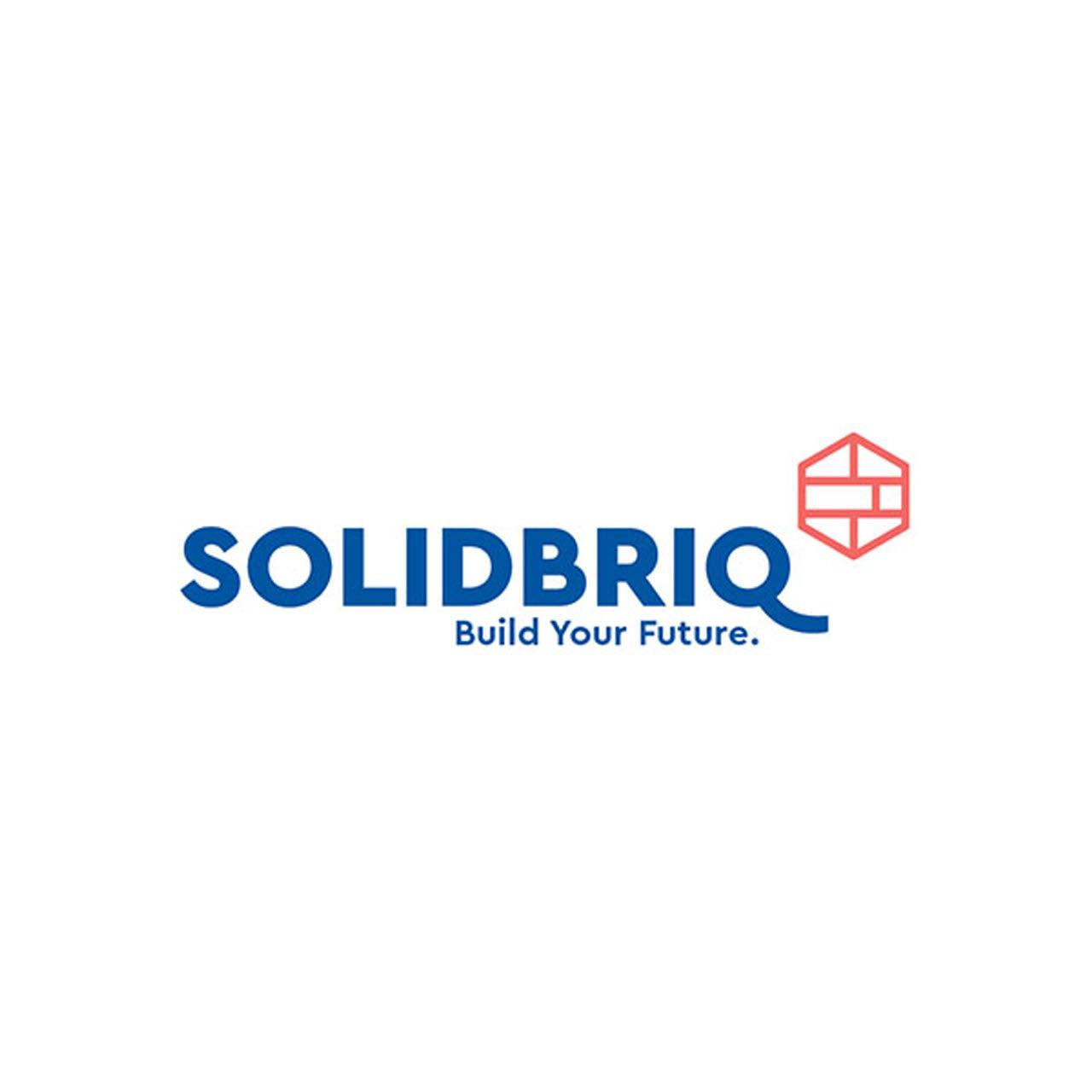 SolidBriQ.jpg