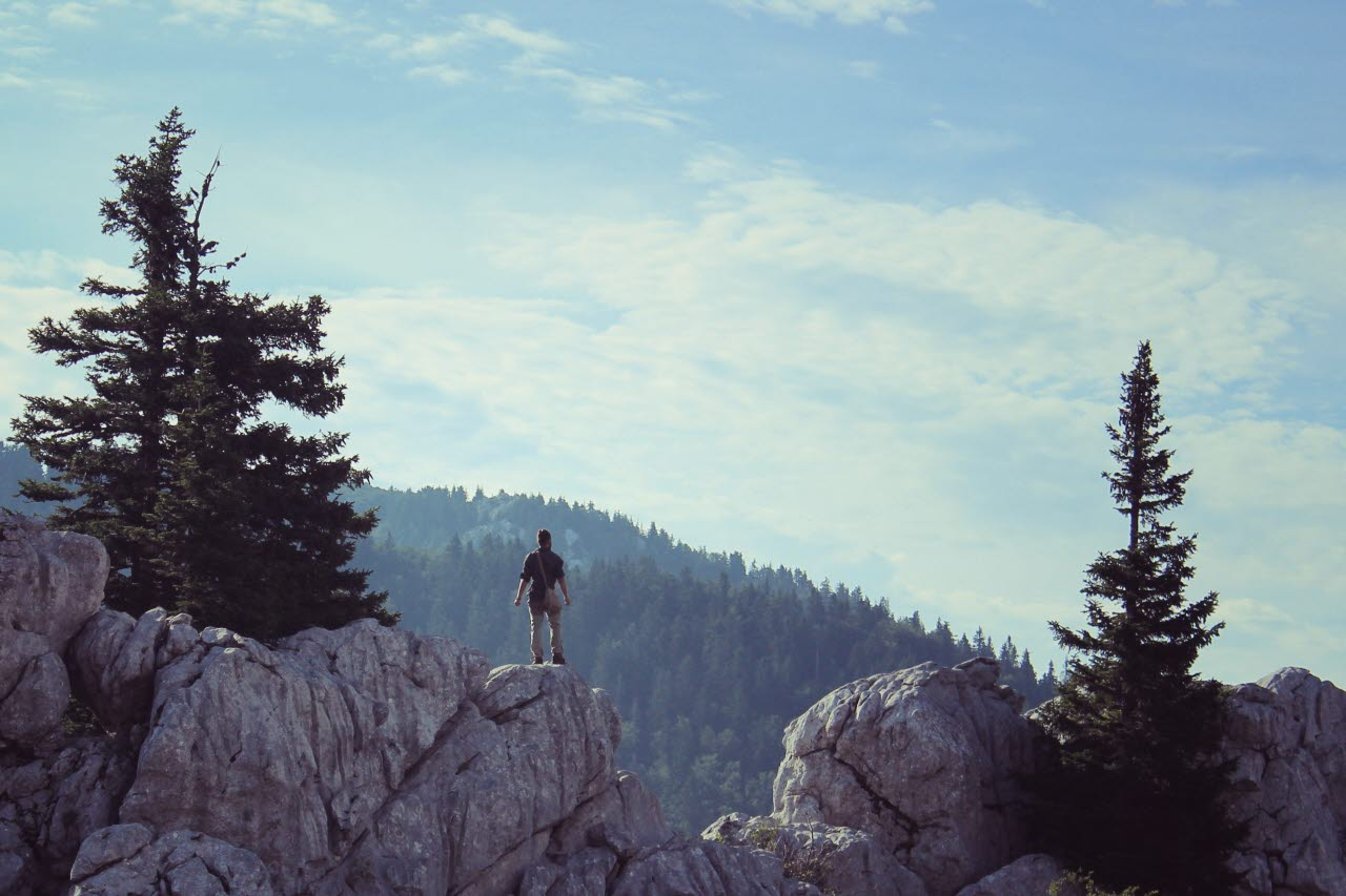 achievement-adventure-conifers-rural-pexels