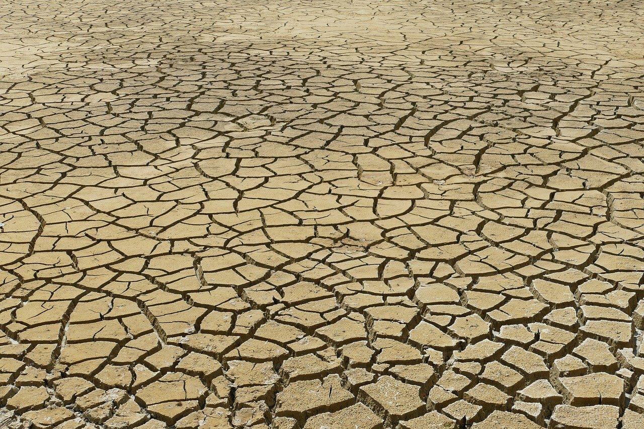 dehydrated ground