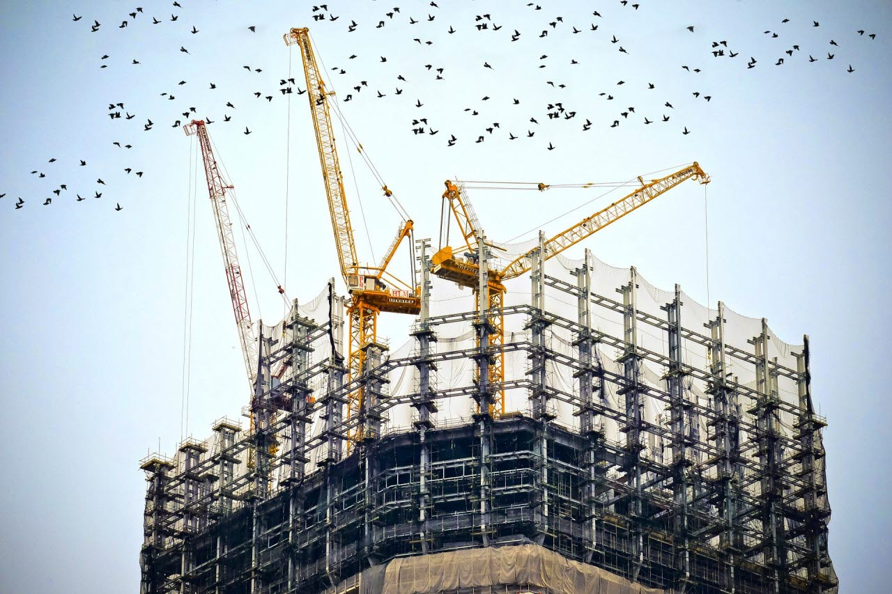 Building work with birds flying overhead