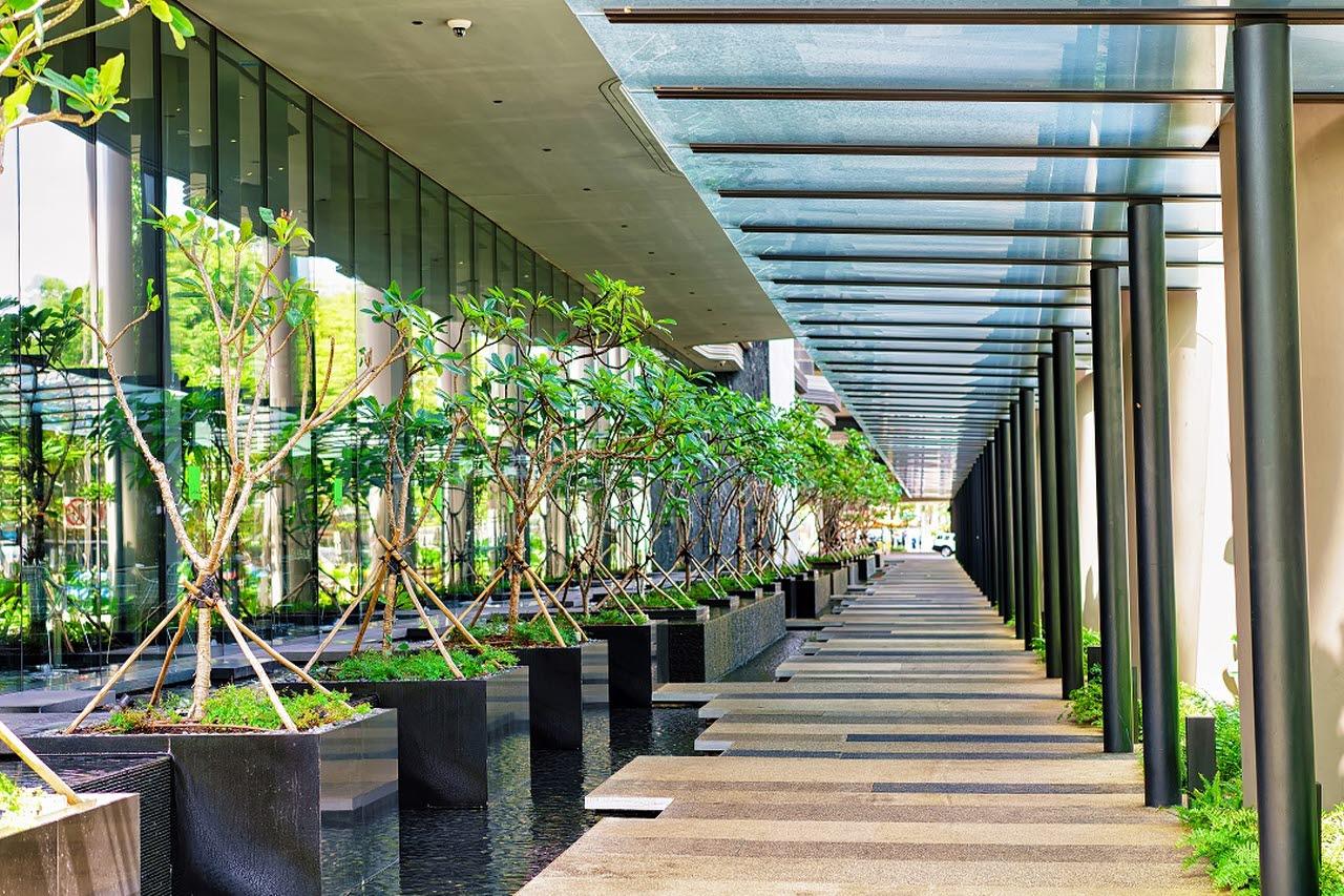 Plants in an outdoor walkway