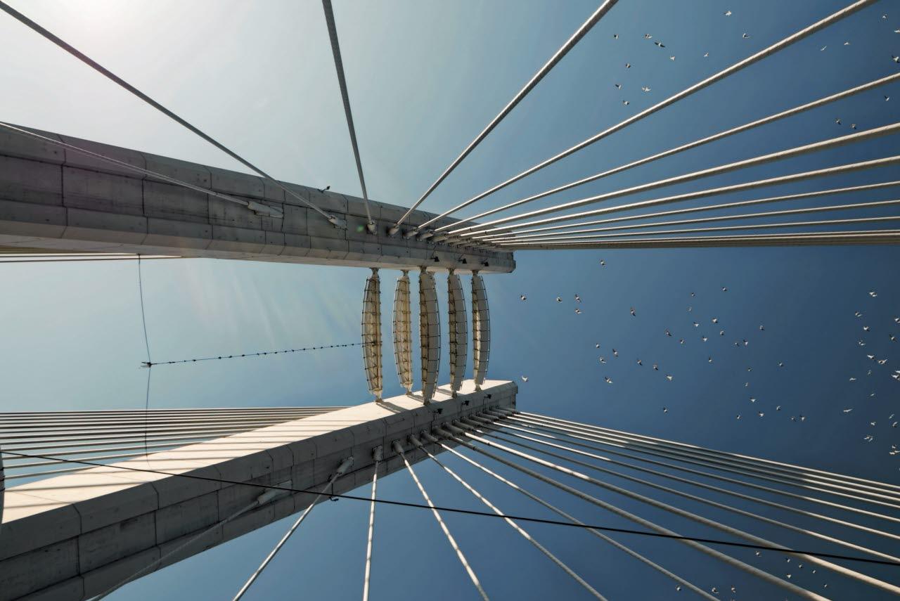 architecture-birds-bridge